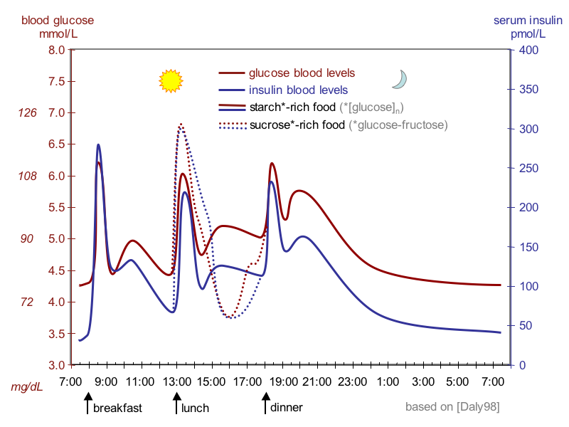 Wikipedia.org: The fluctuation of blood sugar (red) and the sugar-lowering hormone insulin (blue) in humans during the course of a day with three meals.